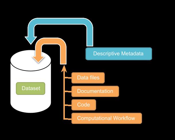 Dataset + File Management — Dataverse org